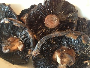 Grilled Portobello Mushrooms