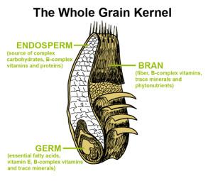 Whole Grain Kernel